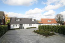 Detached Bungalow for sale in Willow Dene...
