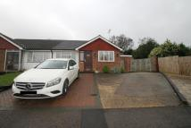 3 bed Semi-Detached Bungalow in Clarence Close...