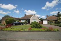 3 bed Detached Bungalow in Rose Lawn, Bushey Heath...
