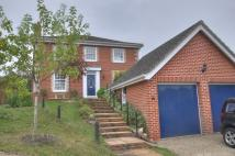 Detached property in Newby Close, Halesworth