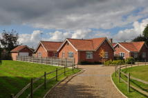 Detached Bungalow in Holmere Drive, Halesworth