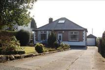 Bungalow to rent in Chorley New Road...
