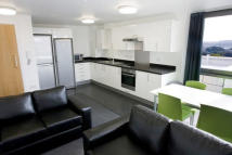 new Flat in London Student Pods...