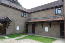 Flat to rent in Munden Close, Feltwell...