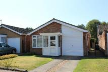 2 bed Detached Bungalow for sale in Lindsey Close, Bessacarr...