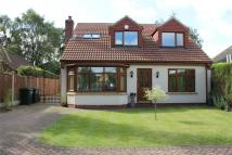 12 Hatchell Drive Detached house for sale