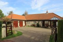 Detached Bungalow for sale in Brandfield Forge...