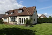 5 bedroom Detached house in 24 Church Lane...