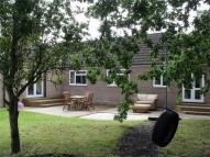 4 bed Detached Bungalow for sale in 167a Bawtry Road...