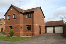 Detached house for sale in Brampton Lane, Armthorpe...