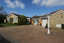 Detached Bungalow in 16 Birchwood Dell...