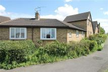 Bungalow to rent in Rosecroft Close -...