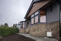 semi detached house in Newsome Road, Lockwood...