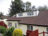 Detached Bungalow in Dranllwyn Close, Machen...