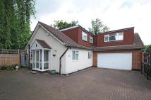 property to rent in Chandos Avenue Whetstone...