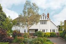 Detached home for sale in Buckingham Avenue...