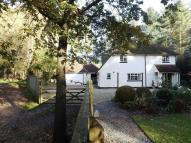 Character Property in Edge of Forest - Verwood...
