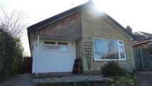 3 bedroom Bungalow for sale in Acle