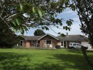 Bungalow in Filby