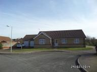 Detached Bungalow to rent in Pepys Avenue, Worlingham