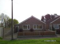 Detached Bungalow to rent in Speedwell Close...