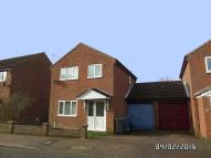 Detached property to rent in Russet Close, Beccles