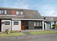 2 bed semi detached property to rent in 41 Dyers Court, Kelso...