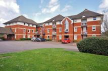 Flat for sale in Jackman Close, Abingdon...