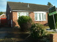 Semi-Detached Bungalow to rent in Kestrel Drive...
