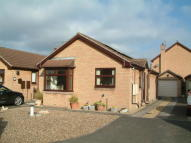2 bed Detached Bungalow in Meadow Walk, Edenthorpe...