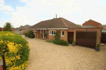 Detached Bungalow for sale in Braunston Road, Oakham