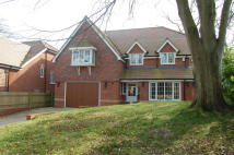 Newbury Detached house to rent