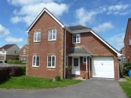 Detached property to rent in Cross Parks, Cullompton...
