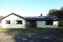 3 bed Bungalow to rent in Tredaule, Launceston...