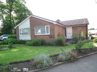 2 bed Detached Bungalow to rent in The Bungalow...