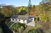 Detached Bungalow for sale in Lower Cross Stone...
