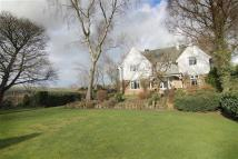 5 bedroom Detached property in Pecket House...