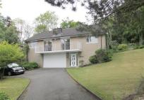 3 bed Detached house for sale in Holmes Green...
