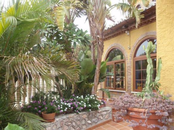 More of the pretty tropical garden