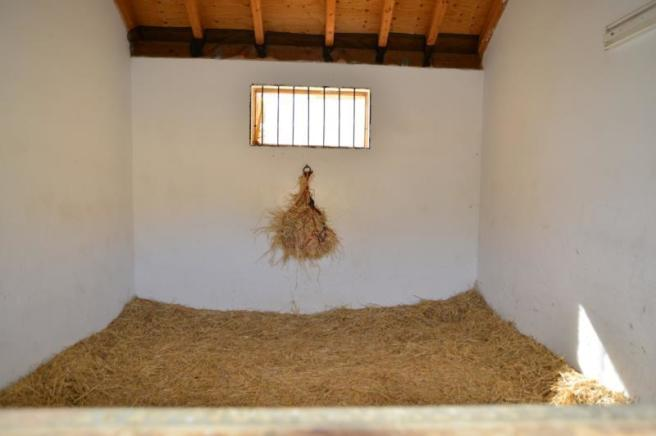 The interior of the stables