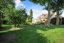 4 bedroom Detached home in The Butts, Westbury, BA13