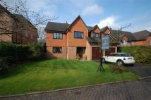 5 bedroom Detached house for sale in Broomhill Drive...