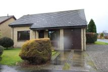 Detached Bungalow to rent in Glenorchil View...