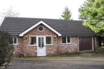 Detached Bungalow to rent in Schoolfold Lane...