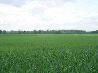 Land for sale in Arable Land at...