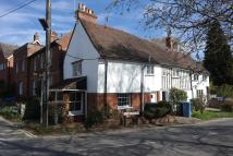 Cottage to rent in Stoke Road, Nayland...