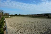 Equestrian Facility home in White Willow Farm...