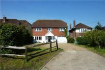 Equestrian Facility home in Hurston Lane, Storrington
