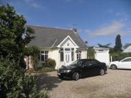 4 bed Detached Bungalow for sale in Beccles Road, Bradwell...