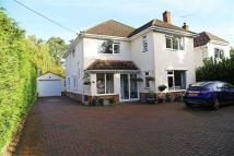 Detached property in The Avenue, Ferndown...